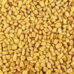 Yellow Fenugreek Seeds