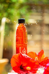 Yoga Jal -The Synergy Drink - Healthy Hibiscus