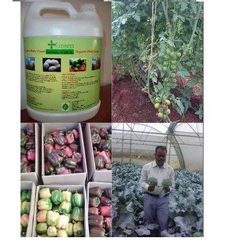 Dr Green Greenhouse Fertilizer, Saanvi Organics | ID: 10343313555
