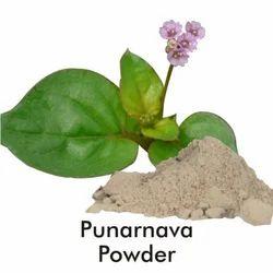 Punarnava Extract