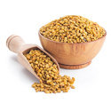 Fenugreek Oil