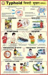 Typhoid For Prevent Diseases Chart
