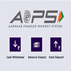 AEPS White Label Solution