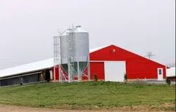 Steel Prefabricated Poultry Sheds