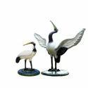 White Siberian Crane Bird Pair