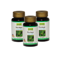 Moringa Nutritional Supplements