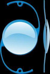 Veterinary IOLs - Intra Ocular Lenses