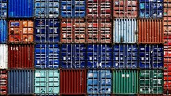 Agro Fruit Storage Container