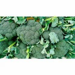A Grade Green Fresh Broccoli