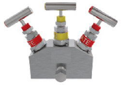 2 Valve Manifold-Double Block & Bleed (Remote Mounting)