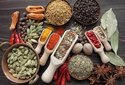 Pulses and Organic Spices