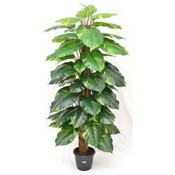 Artificial Happy Philo Real Money Plant  2.5'