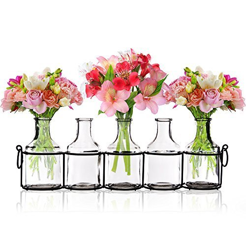 Glass Mini Vases At Rs 700 Piece Glass Vase Id 15899101312