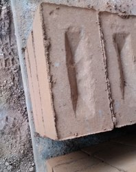Red Iron Ash Bricks