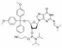dG DMF phosphoramidite