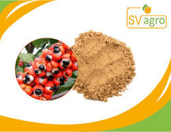 Guarana Seed 22% Caffeine Extract
