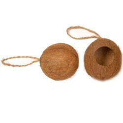 Coconut Shell Bird Nest