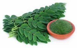 Organic Moringa Powder & Oil