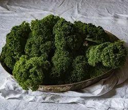 Fresh Green Broccoli In Himachal