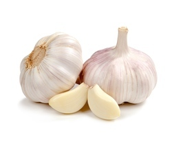 Super Absorbent Polymer For Garlic