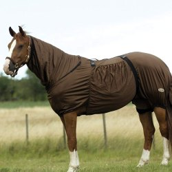 Sweet Itch Horse Rugs