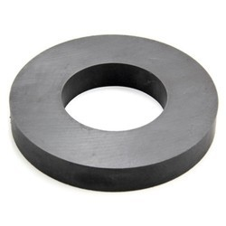 Ring Magnet 100/50/10