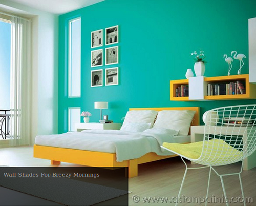 Asian Paints Blue Colour Paints Wall Putty Varnishes Dhariwal