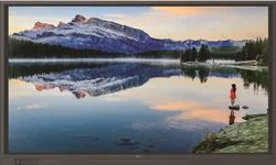 Newline 4K 20 Touch Interactive Display