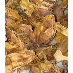 Dry Nymphaea Nouchali