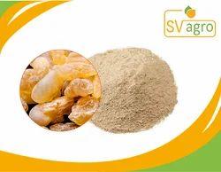 Boswellia Extract Powder