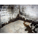 Basement Waterproofing Service