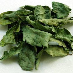 Dehydrated Curry Leaves