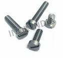 SS 316 Cheese Head Screws