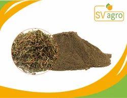 Brahmi Extract Powder