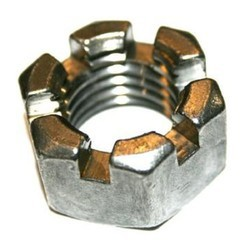 SS Slotted Nut