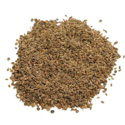 BTL Brown Celery Seeds, Packaging Type: Carton, Packaging Size: 100g