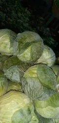 A Grade Tamil Nadu Fresh Green Cabbage