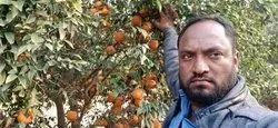 Himachali A Grade Fresh Fruits