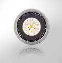 17 Watt Syska LED Par Lamp