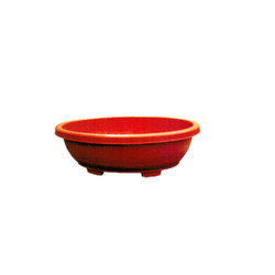 Oval Bonsai Tray