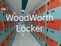 Custmize Tata Crca Steel Storage Lockers, For Office, Model Name/number: Woodworth Personal Locker 6