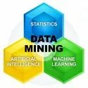 CRM Data Mining Services