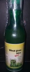 Wheat Grass Juice with Honey Giloy Tulsi