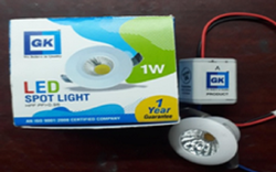 1W LED SPOT(BUTTON) LIGHT