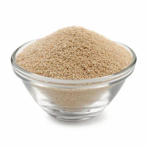 saccharomyces cerevisiae dry yeast 25 rs 265 kilogram mitushi