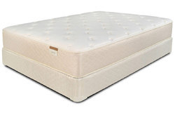 Orthospine Foam Mattress