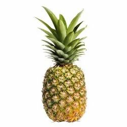 A Grade Fresh Pineapple, Packaging Size: 10 Kg