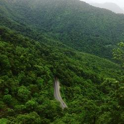 2 Book 3 Days Wayanad Holiday Packages, Kochi