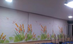 PVC Printed Roller Blinds