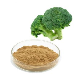 Broccoli Extracts 10:1
